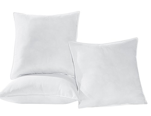 Chezmoi Collection Extra Filled Down Alternative Euro Pillow Cushion Insert 28