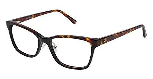 Eyeglasses Ann Taylor at 403 C01ブラック/ Tort   B06XT2BB84