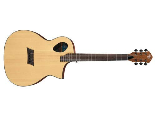 Michael Kelly Forte Port 6 String Acoustic-Electric Guitar, Right (MKFPN) by Michael Kelly
