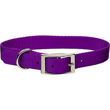 "Coastal Pet Metal Buckle Nylon Personalized Dog Collar in Purple, 1"" Width"