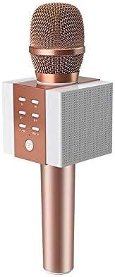 マイク BluetoothワイヤレスカラオケマイクのBluetoothスピーカー2イン1ハンドヘルドが歌うポータブルKTVプレーヤーの記録します イベントスピーチ (Color : Gold, Size : One size)