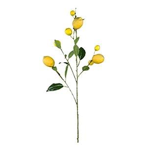 VORCOOL Artificial Lemon Branches Simulation Lemon Tree Plants for Flower Arrangement 50