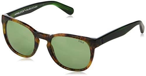 Polo Ralph Lauren Men's 0ph4099 Non-Polarized Iridium Round Sunglasses, Shiny Jerry Tortoise, 52.0 mm ()
