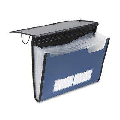 Pendaflex 52670 Professional Expanding Document Organizer, Letter, 7 Pockets, Blue (PFX52670) by Pendaflex