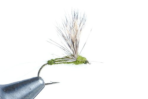 - Blue Wing Olive Comparadun Dry Fly, 6 Pack (#14)