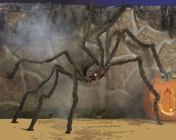 Fun Express Realistic Hairy Spider With LED Eyes by Fun Express