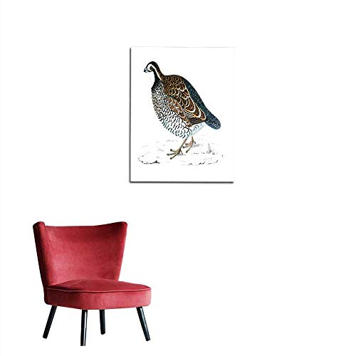 longbuyer Wallpaper Virginian Partridge - Hand Coloured Engraving Mural ()