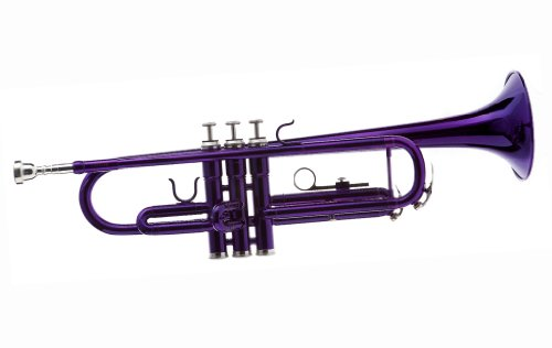 Hawk WD-T314-PL Bb Trumpet with Case and Mouthpiece, (Purple Trumpet)
