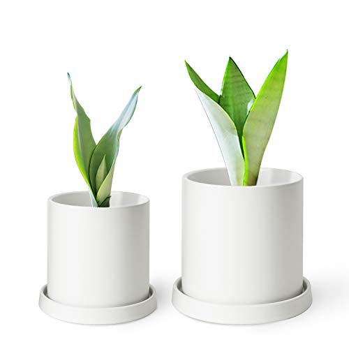 MoonLa Plant Pots - 5.7 + 4.8 Inch White Matt Ceramic Planter for Flower, Cactus, Succulent Planting, with Drainage Hole & Saucer, Set of 2 (Plants Not Included) ()