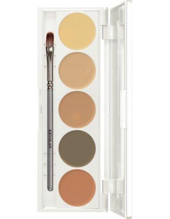 Amazon.com : Kryolan Dermacolor Camouflage Creme Quintet 75015 D Q5 Makeup Palette : Beauty