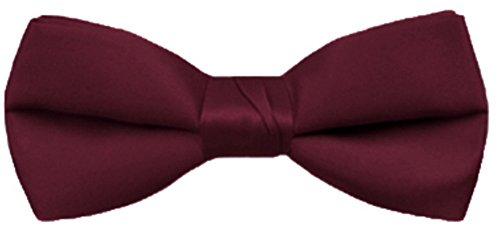 Price comparison product image Boy's Poly Satin Banded Bow Ties - Wine