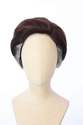 Cosplaywigscom: Doctor Strange Wig Inspired of Movie Doctor Strange Short Brown Straight Fullback Cosplay Hair with White Streaks for Adults and Teens -