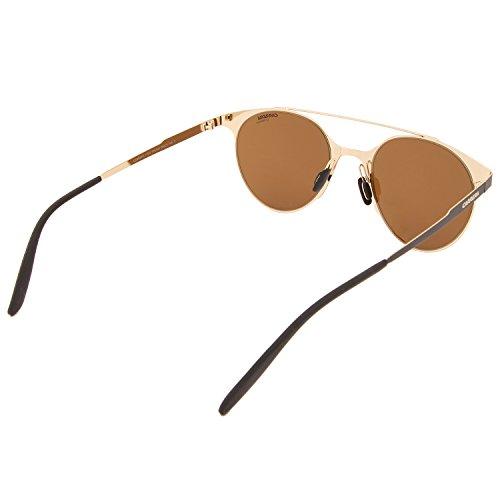 Gold Carrera Dorado S Blackmt Brown Sonnenbrille 115 wqaT0