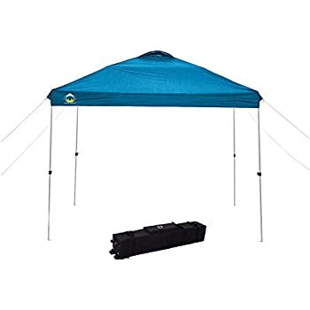 CROWN SHADES 10ft X 10ft Outdoor Pop Up Portable Shade Instant Folding  Canopy With Carry Bag