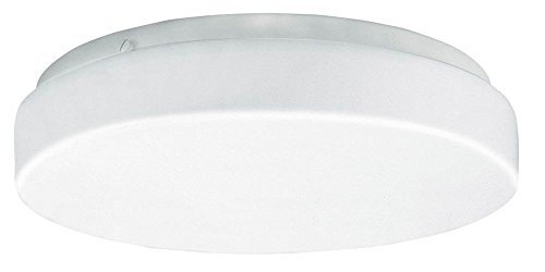 19 in. Acrylic Round LED Ceiling Light