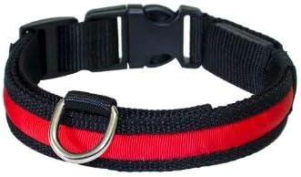 PRECORN Collar para Perros Luminoso Zandoo Collar LED en el Color Rojo. Tamaño M (40-50 cm)