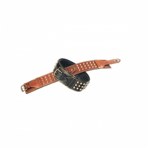 Petego La Cinopelca Padded Soft Leather Double Studded Dog Collar, Brown, 2 3/8 Inches, Fits 15