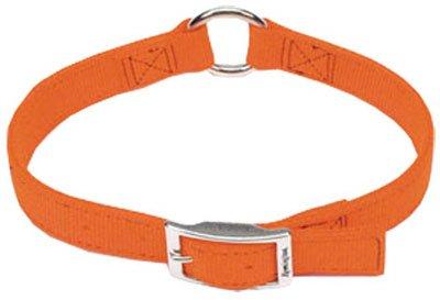 coastal pet products, inc. r2905 g sor18 Remington, 1 -Inch x 18 -Inch, Orange, Double Ply Dog Collar