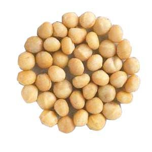 Raw Macadamias Nuts 25-Pound 25 lbs. by Bayside Candy