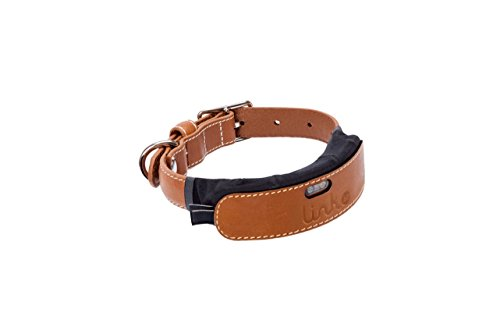 Link AKC Smart Dog Collar - GPS Location Tracker, Activity Monitor, and More, Leather Extra Small (KITTN05)