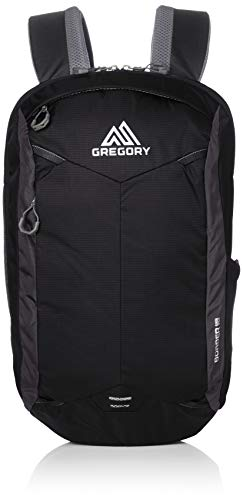 Gregory Mountain Products Border 18 Liter Laptop Backpack, Pixel Black, One Size ()