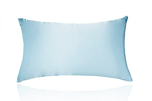 LULUSILK 19 Momme Both Sides 100% Silk Pillowcase, Pillow Co