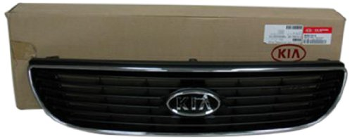 OE Replacement Kia Optima//Magentis Grille Assembly Multiple Manufacturers KI1200122OE