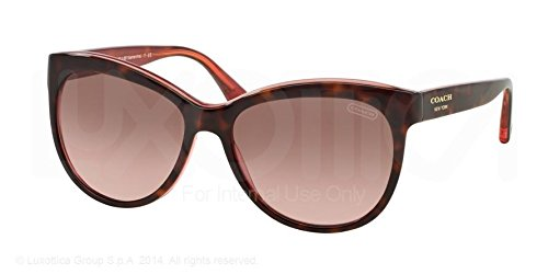 6a7c5e772805 Image Unavailable. Image not available for. Colour: Coach Cat Eye Sunglasses  HC 8055 Tortoise 5115/14 Samantha