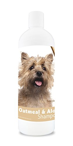 Healthy Breeds Dog Oatmeal Shampoo with Aloe for Cairn Terrier - Over 75 Breeds – 16 oz - Mild and Gentle for Itchy, Scaling, Sensitive Skin – Hypoallergenic Formula and pH Balanced