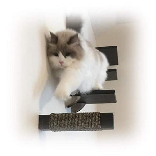 Purrfectly Catastic Floating Cat Post Steps (3 Post Set) | Handcrafted, Solid Hardwood Climbing Steps | Space-Saving Wall Mounted cat Furniture | (Hazelnut, Square)