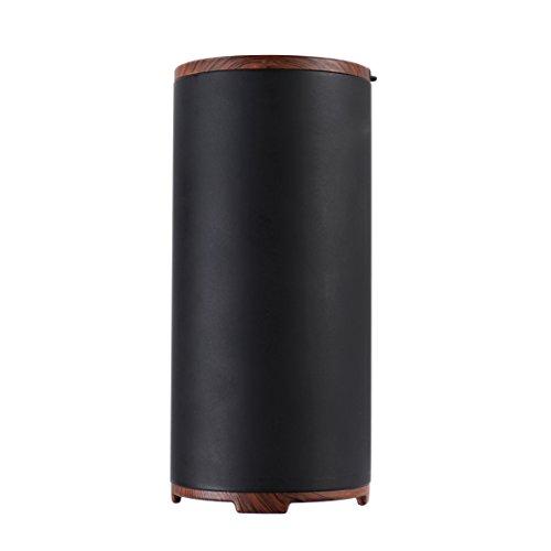 Qingta Portable New Car Home Office Breathe Fresh Ozone Air Purifier,Black