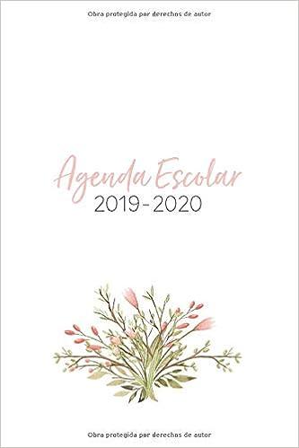 Agenda Escolar 2019-2020: Flores Rosas para Mujeres Jóvenes ...