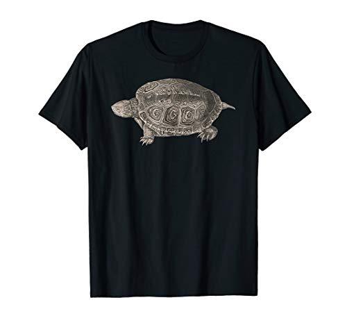 (Cute Turtle Shirt Diamondback Terrapin Turtle Lover Tee)
