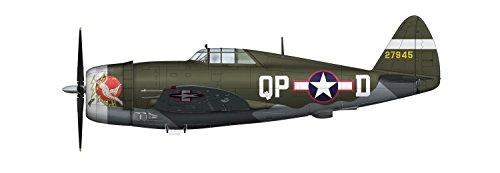 1/48 P-47D レイザーバック `第334戦闘飛行隊` HA8450B