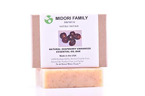 Midori Family SoapBerry Soap Enhanced Essential Oil Bar | Naturally Moisturizing | ()