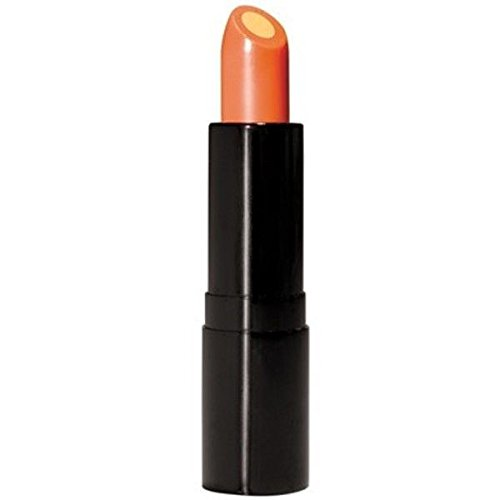 Lip Balm Vitamin C Lip Treatment SPF 15 - Wrapped Around a Conditioning Core of Vitamin E That Smoothes, Soothes and Helps Prevent Dryness and Chapping (Antioxidant Spf 15 Lip Therapy)
