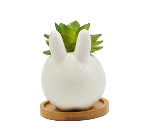 Cute Cartoon Animal Bunny Shaped Ceramic Succulent Cactus Flower Plant Pots with Bamboo Tray (Plant Not Included) (Animal And Plant)