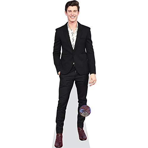 Shawn Mendes (Suit) Life Size Cutout by Celebrity Cutouts (Image #6)