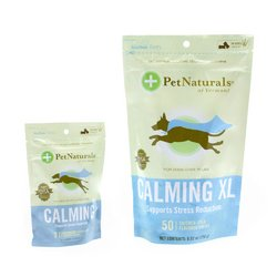 Calming For Small Dogs