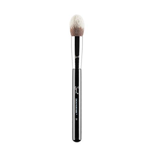 Sigma Beauty F79 concealer kabuki