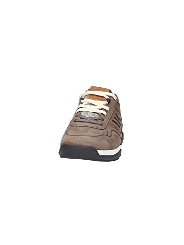 marrone spin 30105 uomo Lumberjack Brown Bwt5q0aBC
