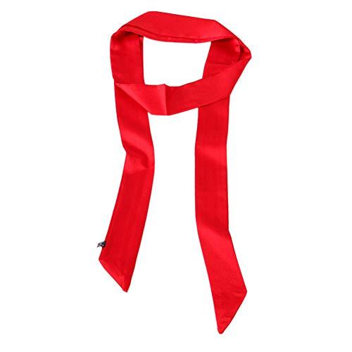 - Ribbon Scarf for Women Handbag Wrap Handle Satin Belt Sash Necktie Neck Scarf PSSD01 (Red)