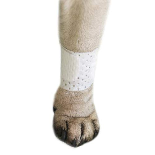 PawFlex Basic Leg Bandages for Dogs, Cats, Pets -First- aid Non Adhesive Fur Friendly, Soft Stretch Wound Care, hot Spots, Fungus, Adjustable Fastening Strap Value Pack