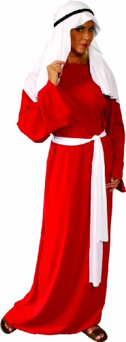 Alexanders Costumes Story of Christ Gown Adult, Red, One (Adult Biblical Costumes)