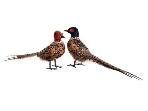 Set of 2 Realistic Feathered Pheasant Bird Figure Christmas ...