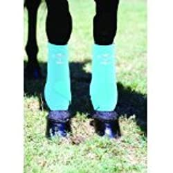 Professionals Choice Equine Smbii Leg Boot, Pair (Large, Turquoise)