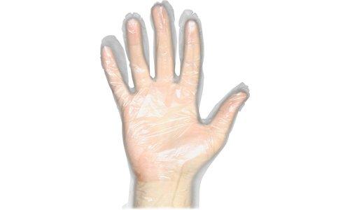 (ProGuard Disposable Clear General Purpose Gloves - Medium Size - Disposable, Comfortable, Durable, Ambidextrous, Lightweight - Polyethylene - 1000 / Carton - Clear)