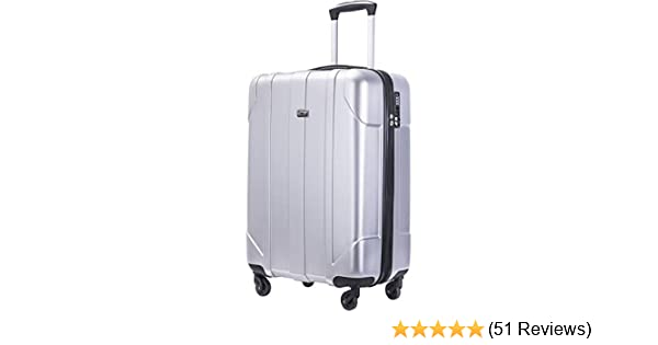 8be1124a7 Amazon.com | Merax Hardside Spinner Luggage with Built-in TSA Lock Lightweight  Suitcase 20inch 24inch and 28 inch Available (Silver, 20 inch) | Luggage