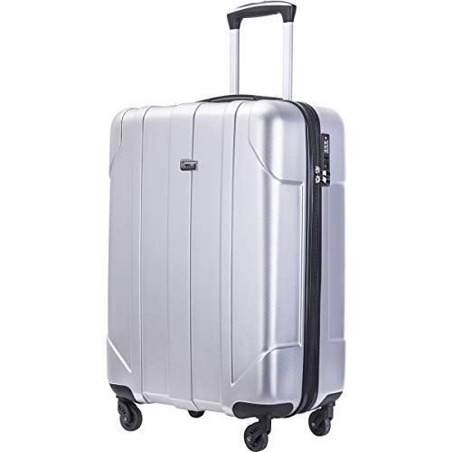 Merax Hardside Spinner Luggage with Built-in TSA Lock Lightweight Suitcase 20inch 24inch and 28 inch Available (Silver, 20 inch)