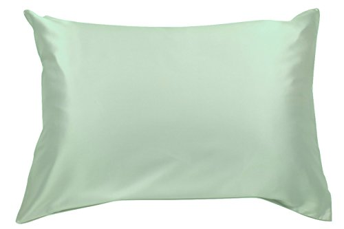 100% Silk Pillowcase for Hair Zippered Luxury 25 Momme Mulberry Silk (Queen, Mint Green)